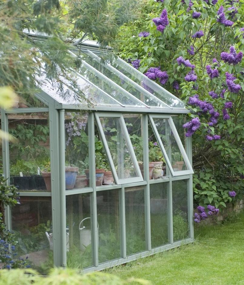 Greenhouse in back garden with open windows