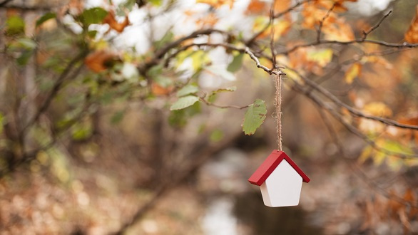 House trinket hanging from tree
