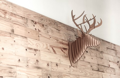 Antlers wallhanging