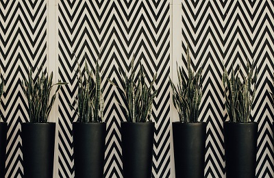 Chevron wall pattern with plants