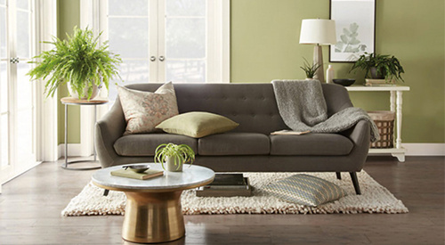 ​​​​​​​Behr color of the year, Back to Nature