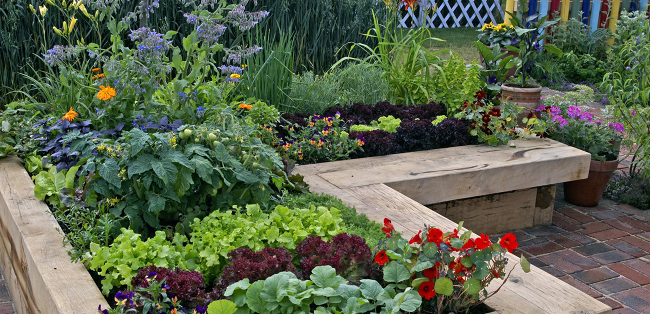 raised garden bed with flowers and vegetables