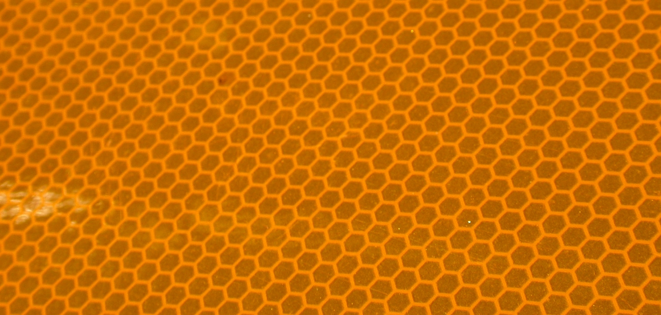 A honeycomb, showing a pattern similar to that of the concrete wall.