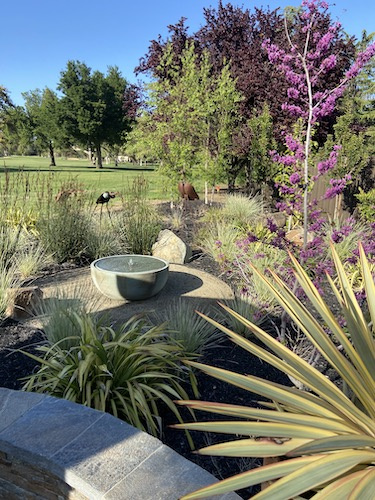 Landscaping with drainage