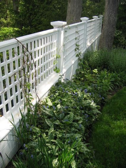 White lattice fence between two trees