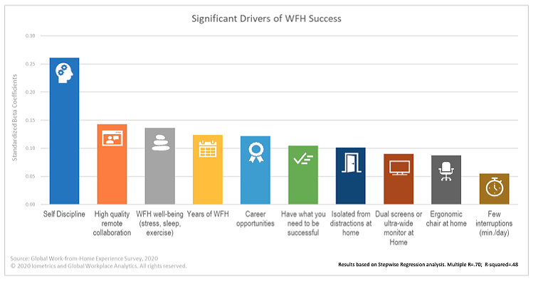 Graphic: Drivers of work from home success.