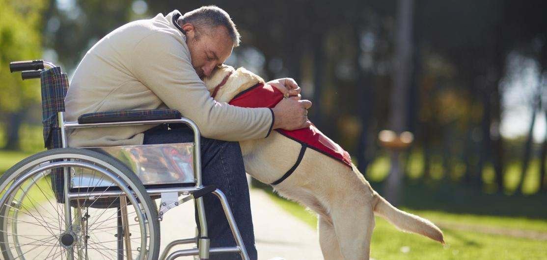 Man in wheelchair hugging service dog