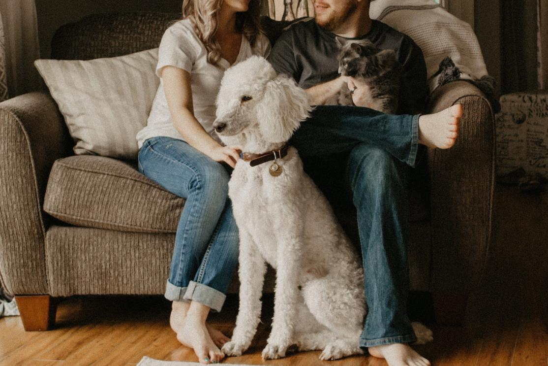 Couple with pets on couch