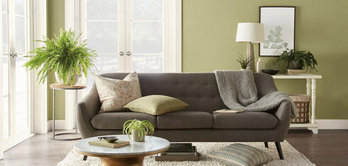 """living room painted in Behr's """"Back to Nature"""""""