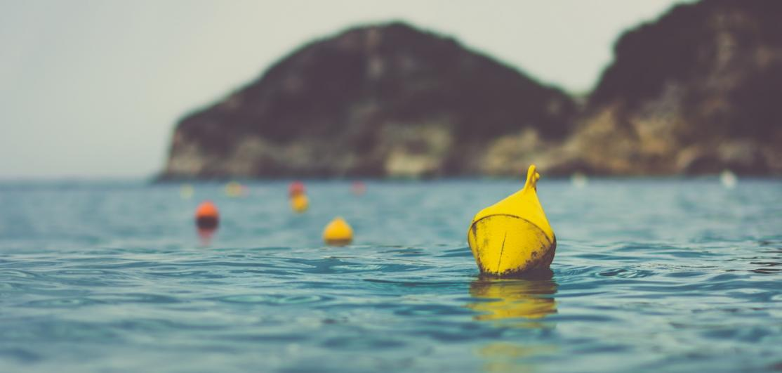 Buoys floating in a calm harbor