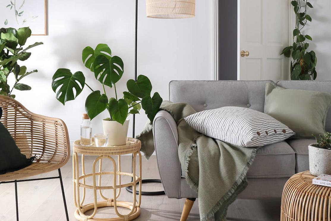Green house plants accent a wicker, white and gray colored living room with chairs couch and lamp.