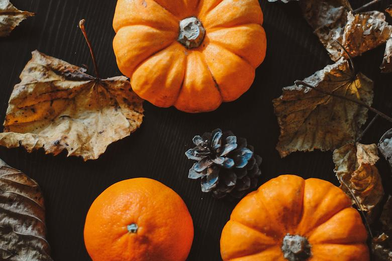 a photo showing small pumpkins