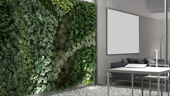 living wall in outdoor courtyard