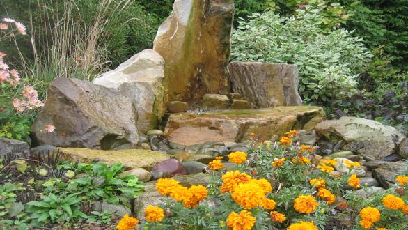 butterfly garden with water feature and colorful flowers