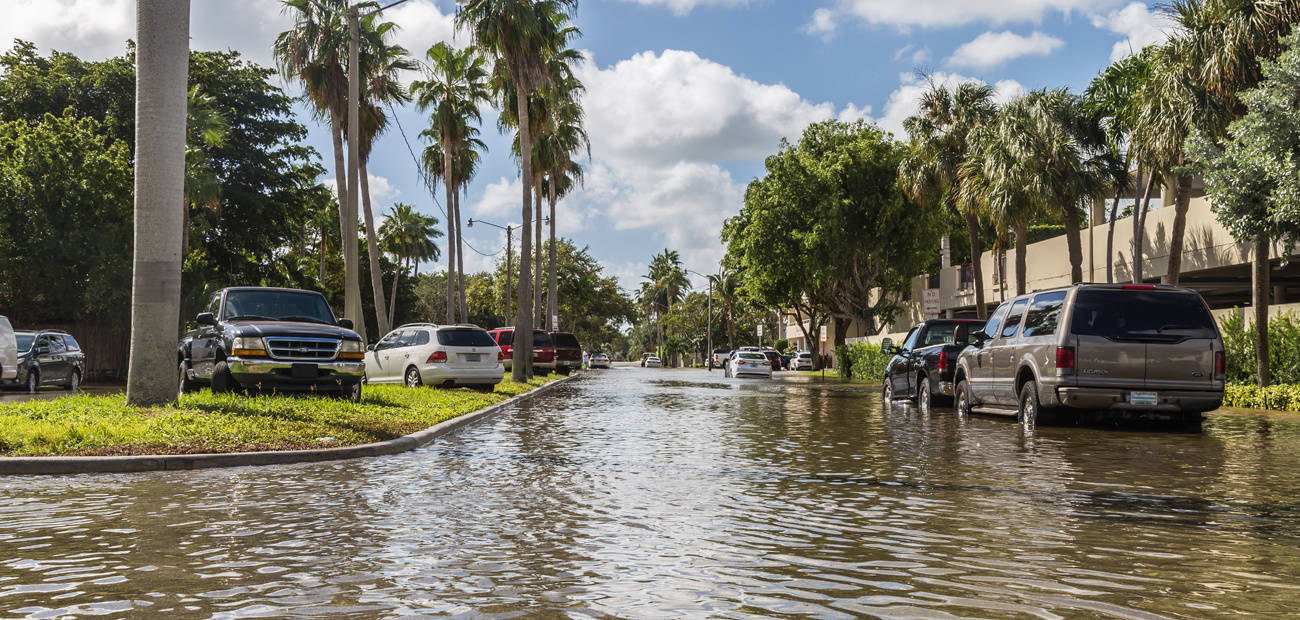 flooded neighborhood in Florida after king tide.