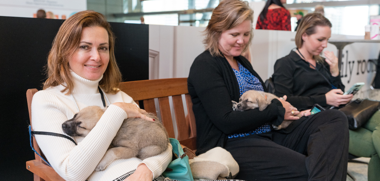Members hold puppies at the Realtors Conference and Expo in Boston.