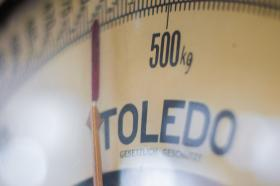 Close-up on scale measuring weight